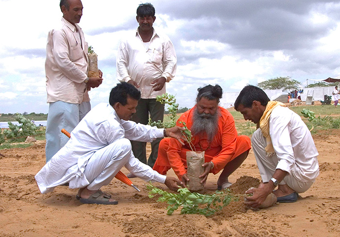 Swamiji's humanitarian activities - Planting a tree