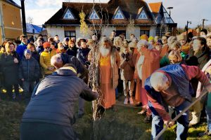 Peace tree planting, Vep, Hungary, December 2019